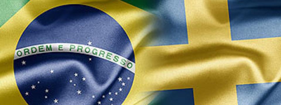(Português) Projeto Científico Sueco-Brasileiro