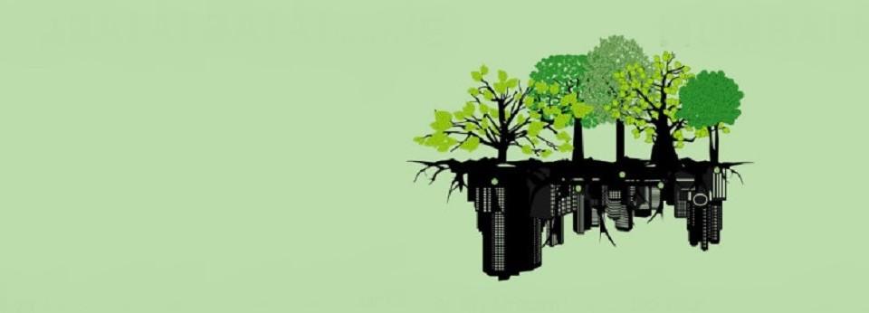 Arborização, vale a pena!